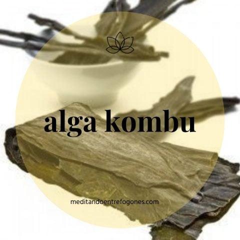 Introducción a la cocina asiática: guía de ingredientes: alga kombu