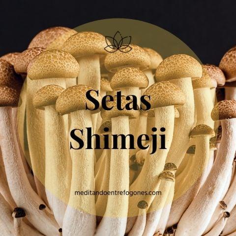 Introducción a la cocina asiática: guía de ingredientes: setas shimeji